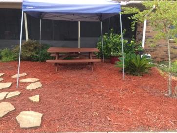 garden after