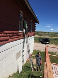 Painting the windows