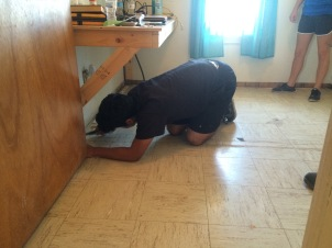 Prepping for new carpet