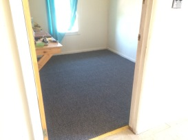New Carpet!